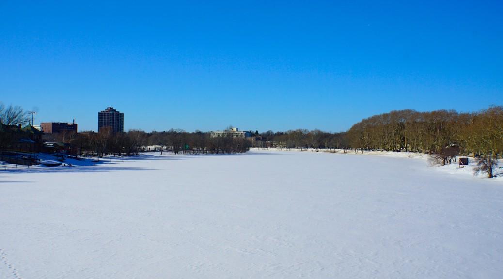 Harvard University Cambridge MA USA 52419